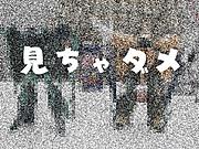 _9145308_2